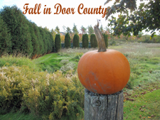 Fall in Door County Homepage Picture